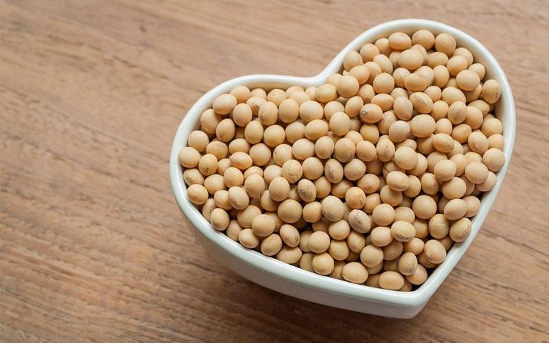 Thực phẩm kích thích hoocmon tăng trưởng bao gồm những gì? 1